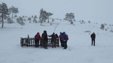 Photo of Planinarski klub Tornik organizovao akciju na vencu Čigote