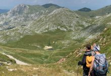 Photo of Planinarenje na Zelengoru